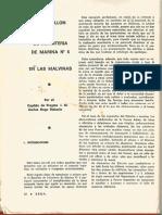 El Batallon de Infanteria de Marina Nro 5 en las Malvinas. Revista Sema