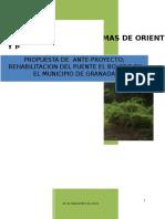 Informe Final Anteproyecto Puente El Bolero