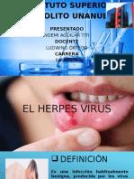 Herpes Virus 29-10-16