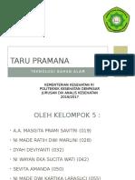 Taru Pramana