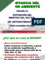 Importancia Minam