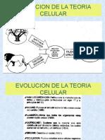 Capítulo 1.4 Evolucion de La Teoria Celular
