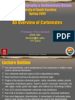 Carbonate rock PPT