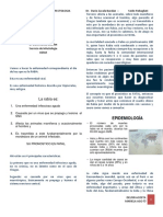 RABIA - Completo - PDF