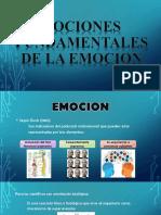 Nociones Fundamentales de La Emocion