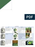 Matriz de deficiencias y excesos en plantas