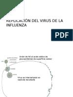 Replicación Del Virus de La Influenza