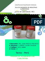 informe de sdimentacion.docx
