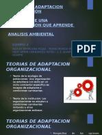 Teorias de Adaptacion Organización