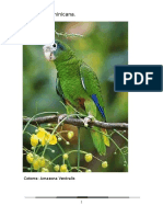 La Fauna Dominicana Trabajo de Liz Terminado.