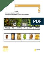 arboles_plantas.pdf