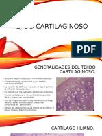 tejido cartilaginoso.pptx