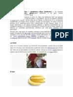El Plátano Metodologia