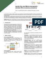 Avance Automatizacion Microempresa