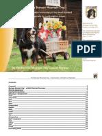 Berner Sennenhund - Commentary of the Breed Standard 150512 (2)