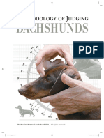 Dachshund-Methodology of Judging