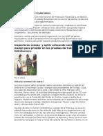 Certificaciones Fitosanitarias Para Estudiar Admin