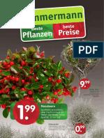 Beilage Oktober 2016 Pflanzencenter Zimmermann