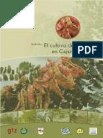Manual El Cultivo de Tara en Cajamarca