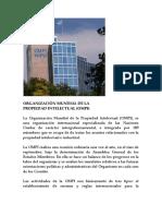 Organización Mundial de La Propiedad Intelectual