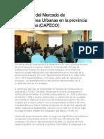 IV Estudio Del Mercado de Edificaciones Urbanas en La Provincia de Arequipa (Resumen CAPECO)