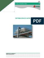 Manual  Distribucion Del Vapor