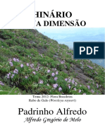 Padrinho Alfredo - Nova Dimensao - Grafica