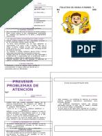 (308079048) 29 Prevenir Problemas Atencion (1)