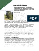 How to Befriend a Tree PDF