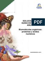 2016 Solucionario Guía 3 Biomoléculas Orgánicas Proteínas y Ácidos Nucleicos