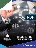 BOLETIN EMPRESARIAL01.pdf