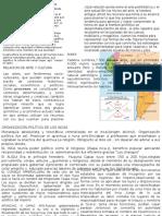 CULTURA ANDINA ing civil - 1ra PARTE.pptx
