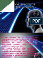 estadosafectivosdelserhumano-130905203600-