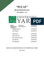 116524305-Blok-Hematologi-Skenario-2-Pucat.docx