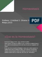 Homeostasis 2015