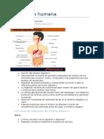 Fisiología resumen