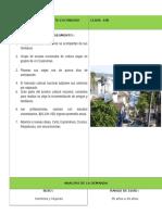 FICHA-TÉCNICA-PUERTO-ESCONDIDO-DEMANDA.docx