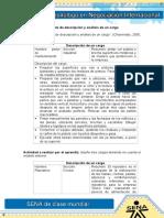 Formato de Descripcion y Analisis de Un Cargo