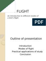 Bird Flight Aerodynamics