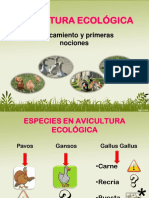 AVICULTURA_ECOLOGICA