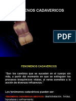 Ayacucho Fenomenos Cadavericos