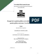 El Papel de La Opinion Publica en La Definicion de La Agenda Politica Mexicana