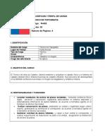 Descripcion y Perfil de Cargo Tecnico en Topografia