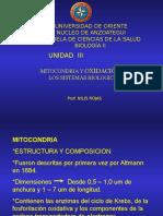 MITOCONDRIA oxidaciones biologicas