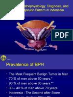 13_TERBARU_BPH Pathophysiology Diagnosis and Therapeutic (Bu