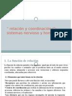 Relación y Coordinación i