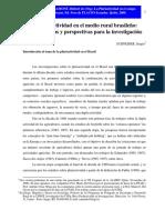 Pluriactividad Del Sector Brasileño
