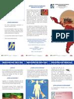 Triptico zika1