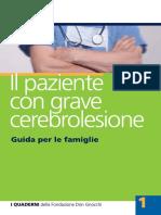 Il Paziente Con Grave Cerebrolesione