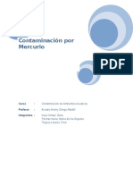 COntaminación Por Mercurio - Final 2015